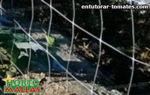 malla tutora instalada para soporte vertical de cultivos