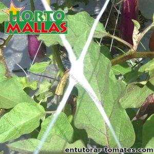 Malla espaldera hortomallas soporte de hortalizas